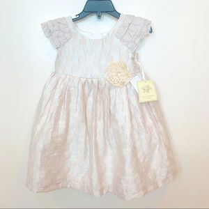 Beautiful Laura Ashley Toddler Girl Dress 2T NWT